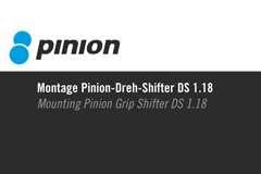 Part 003 - Pinion Montage Pinion-Dreh-Shifter DS 1.18